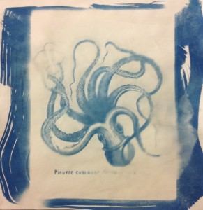 This image is an example of the cyanotype process, a process where a large photographic negative is placed over a piece of paper treated with a cyan mixture. This image is then placed in the sun, the resulting print is washed in water and the result is a blue and white image of the negative.